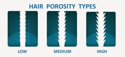 Image result for hair porosity diagram